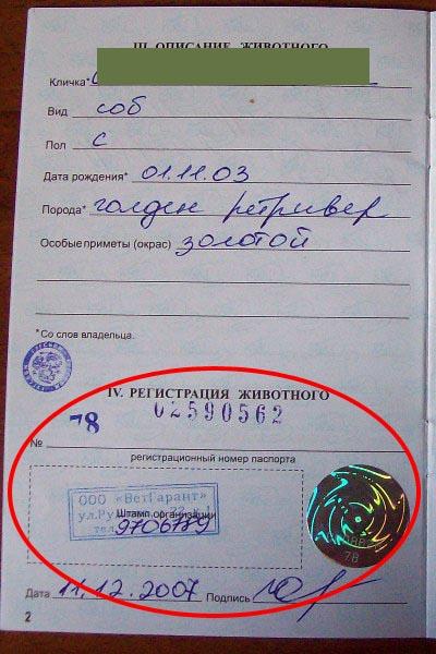 образец заполнения ветеринарного паспорта беларусь